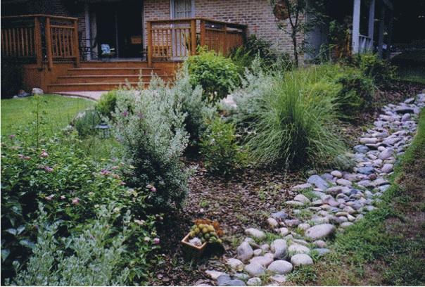 Infiltration garden copy